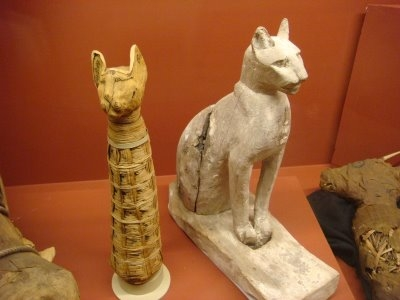 Ancient-Egyptian-Cats-Importance