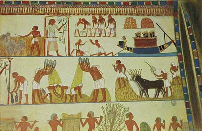 Ancient egyptians irrigation